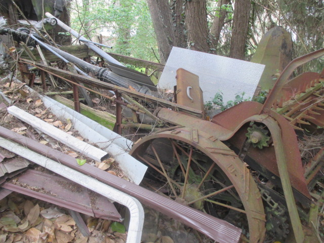 Large Antiques Living Estate Auction, Bristol TN - IMG_1107.JPG